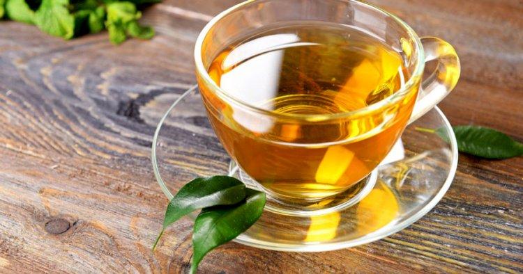 چای سبز چه خواصی دارد؟ لاغری، پوست و عوارض چای سبز