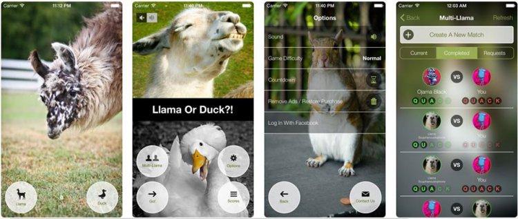 دانلود بازی خنده دار ?!Llama or Duck